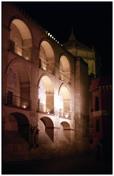 La mosquée en nocturne